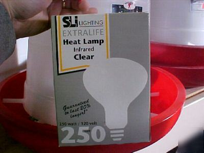 Infrared Clear 250w 120v Heat Lamp Bulb Keep Pets Warm